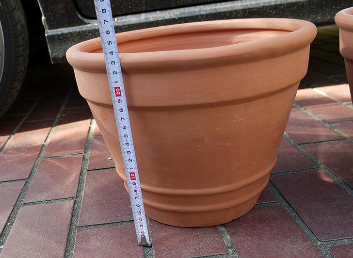 10号サイズのテラコッタ製植木鉢2個をケイヨーデイツーで買って来た6.jpg