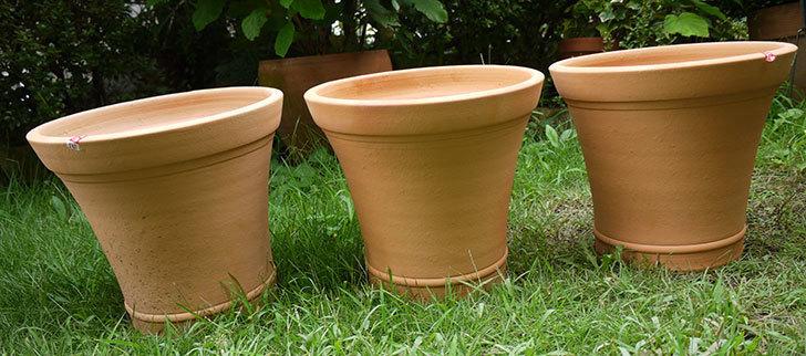10号サイズのテラコッタ鉢-570054-M-(31)がホームズで3個で1,980円だったので買って来た1.jpg