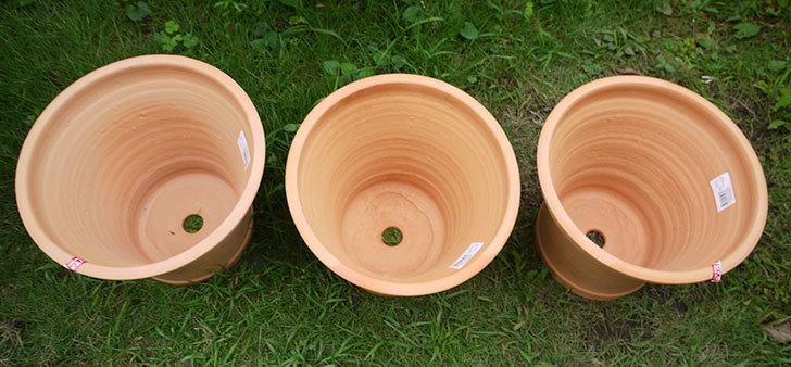10号サイズのテラコッタ鉢-570054-M-(31)がホームズで3個で1,980円だったので買って来た3.jpg