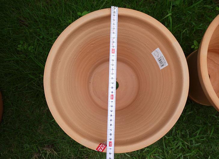10号サイズのテラコッタ鉢-570054-M-(31)がホームズで3個で1,980円だったので買って来た5.jpg