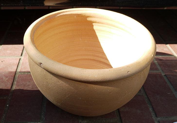 10号サイズのテラコッタ鉢-ボールプランター30-1.jpg