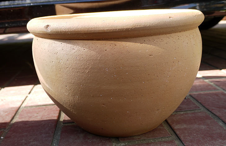 10号サイズのテラコッタ鉢-ボールプランター30-2.jpg