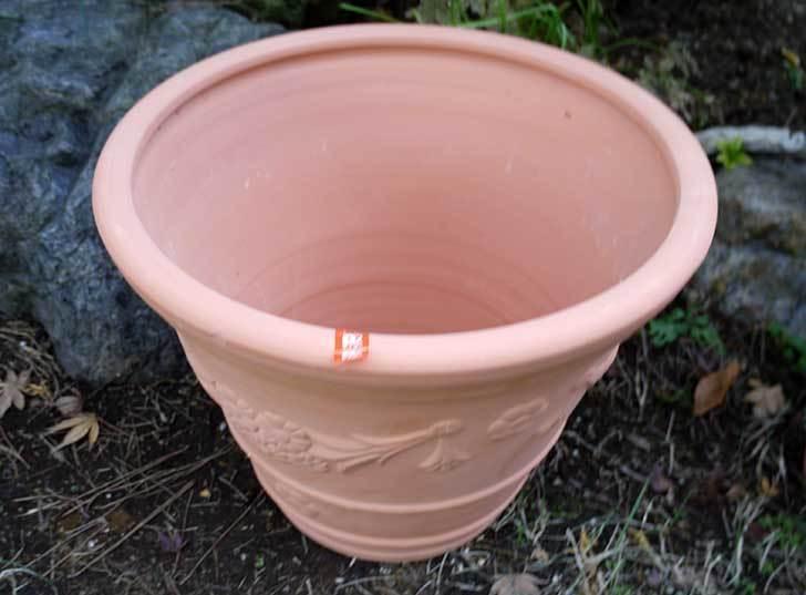 12号サイズの素焼鉢-L-ハイタイプをケイヨーデイツーで買って来た2.jpg