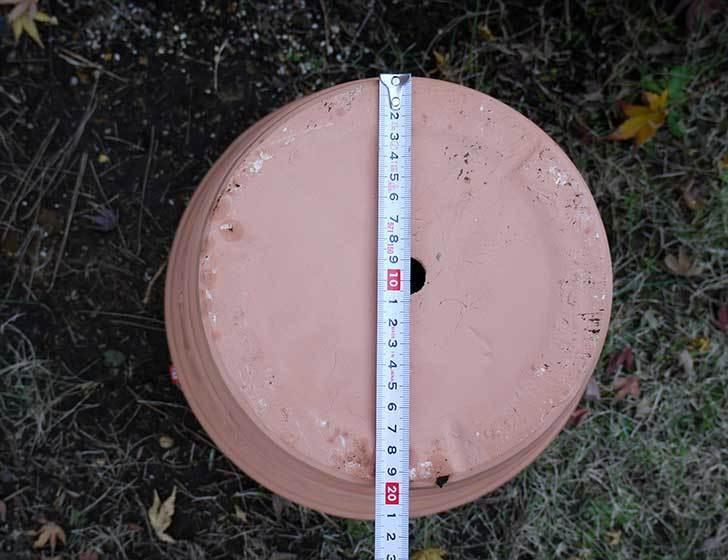 12号サイズの素焼鉢-L-ハイタイプをケイヨーデイツーで買って来た5.jpg