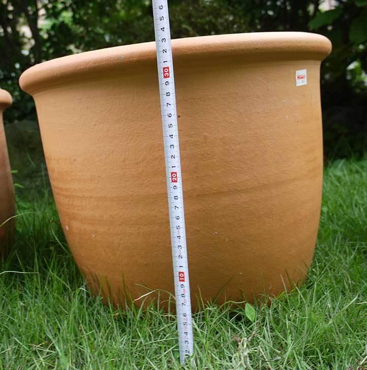 14号サイズのテラコッタ鉢-540086-LL-(43)買った7.jpg