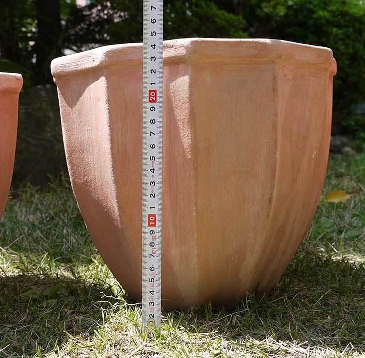 9号サイズのテラコッタ鉢がホームズで500円だったので3個買って来た5.jpg