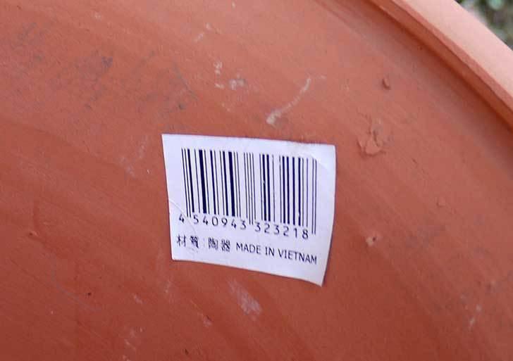 9号サイズの素焼鉢-M-ハイタイプをケイヨーデイツーで買って来た3.jpg
