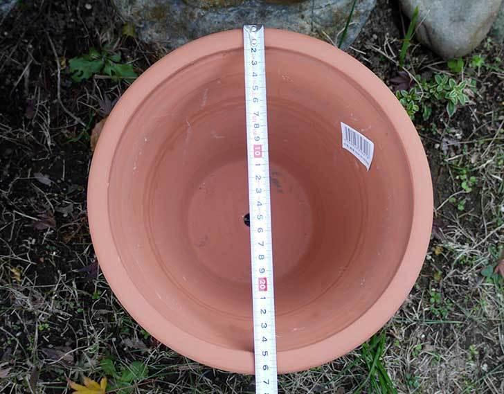 9号サイズの素焼鉢-M-ハイタイプをケイヨーデイツーで買って来た4.jpg