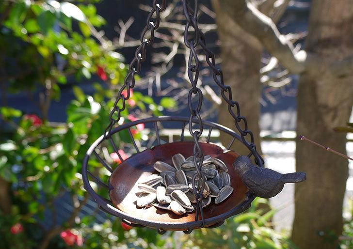 Antiqui-Hanging-basket-アンティークハンギングバスケットを設置した1.jpg