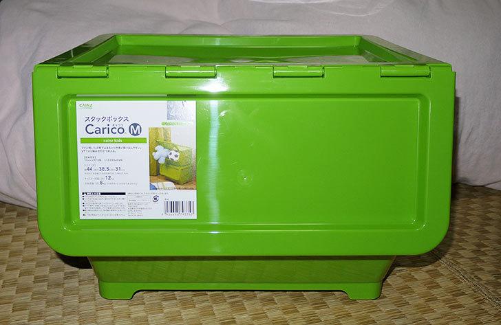 Carico-Mのグリーンをカインズで3個買って来た1.jpg
