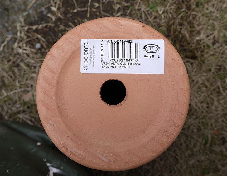 DEROMA-トールポット(0D-18WSZ-vaso-alto)-18cm-(6号)をケイヨーデイツーで買って来た4.jpg