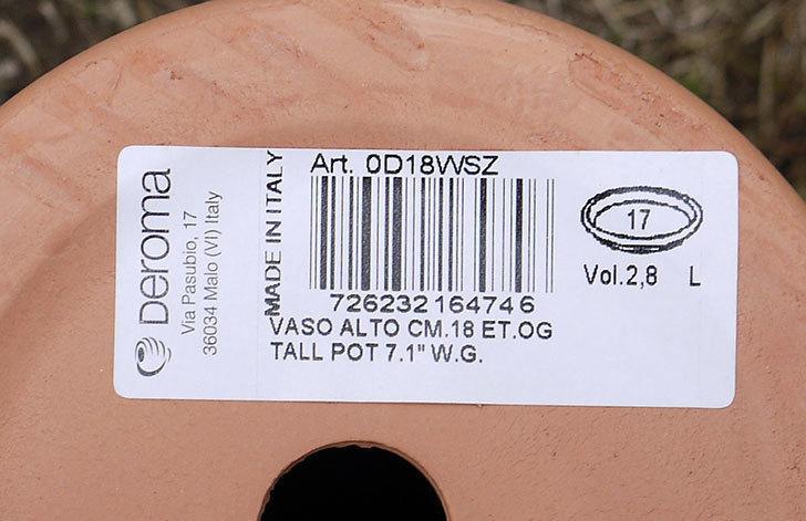 DEROMA-トールポット(0D-18WSZ-vaso-alto)-18cm-(6号)をケイヨーデイツーで買って来た5.jpg