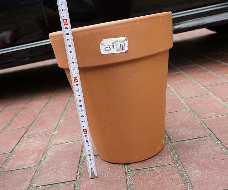 DEROMA-トールポット(0D-vaso-alto)-26cm-(8号)をケイヨーデイツーで買って来た6.jpg