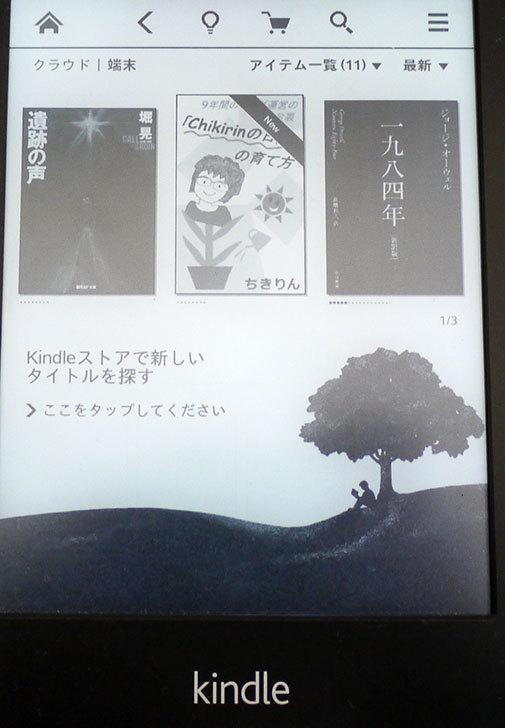 「Chikirinの日記」の育て方-ちきりん(著)を買った3.jpg