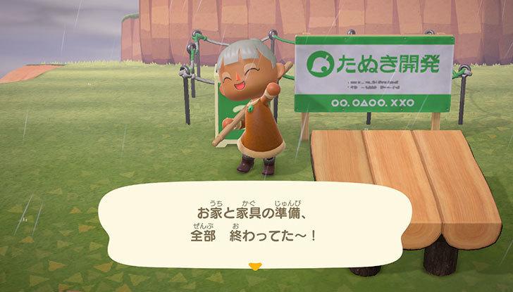 あつまれ-どうぶつの森3-6.jpg