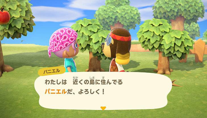 あつまれ-どうぶつの森4-3.jpg