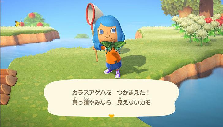 あつまれ-どうぶつの森8-5.jpg