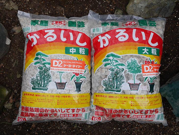 かるいしの中粒と大粒をケイヨーデイツーで買って来た1.jpg