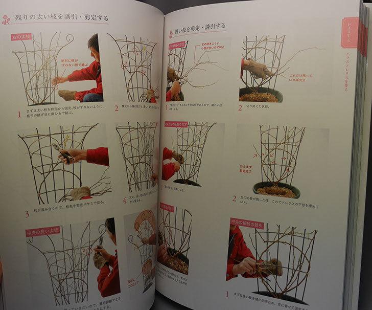 つるバラの選び方・育て方・仕立て方- 憧れのバラのアーチが作れる を買った005.jpg