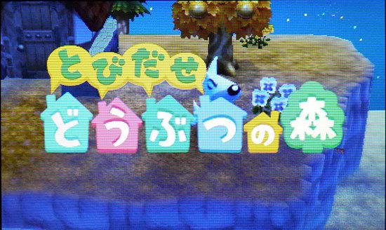 とびだせ-どうぶつの森、プレイ中1-1.jpg