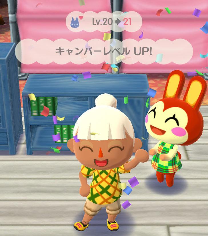 どうぶつの森-ポケットキャンプ2-5.jpg