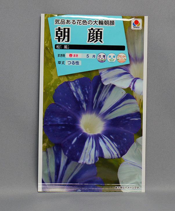 アサガオ(松風)の種をケイヨーデイツーで買って来た1.jpg