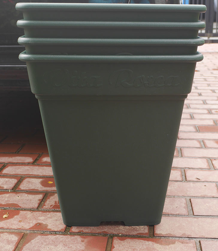 アップルウェアー-ロゼアスクエア-390型-グリーンを4個買った1.jpg