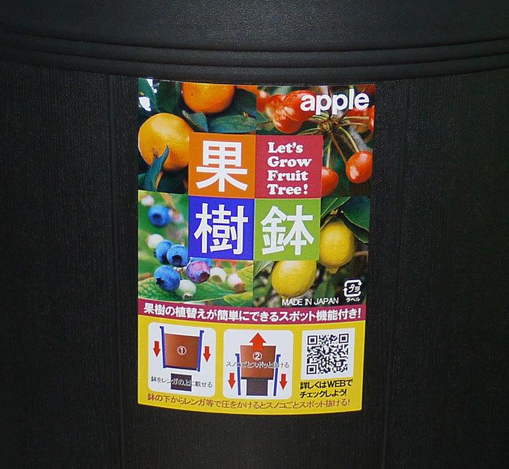 アップルウェアー-果樹鉢-365型-ブラックを3個買った3.jpg