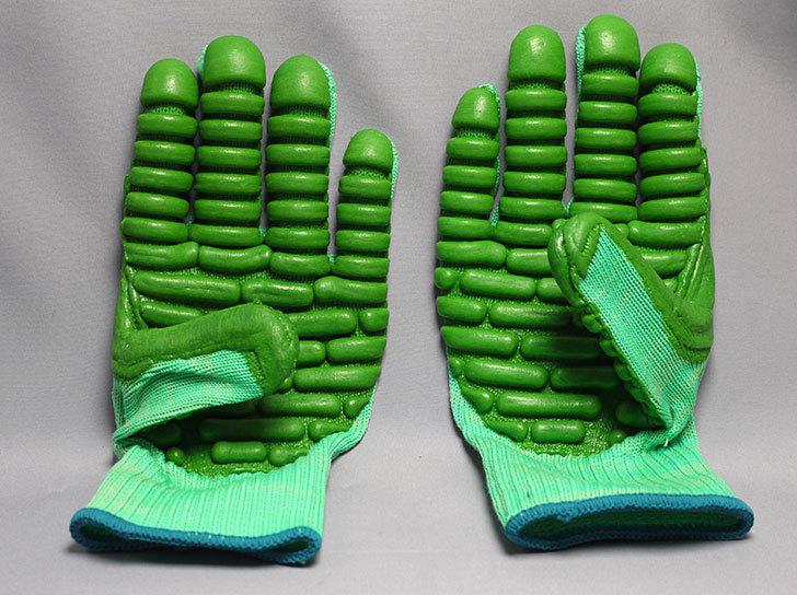 アトム-振動軽減手袋-しんげんくん-フリー-1120を買った4.jpg