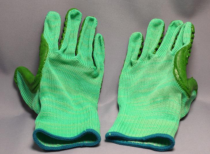 アトム-振動軽減手袋-しんげんくん-フリー-1120を買った5.jpg
