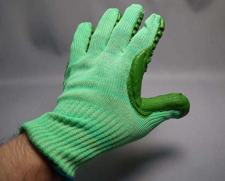 アトム-振動軽減手袋-しんげんくん-フリー-1120を買った8.jpg