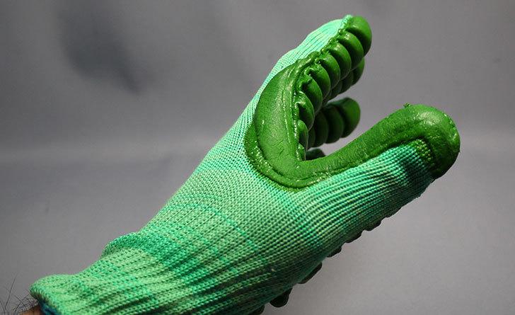 アトム-振動軽減手袋-しんげんくん-フリー-1120を買った9.jpg
