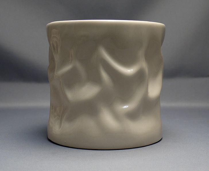 アート植木鉢-花盆-洋陶器植木鉢43(クリーム色)を2個買って来た3.jpg