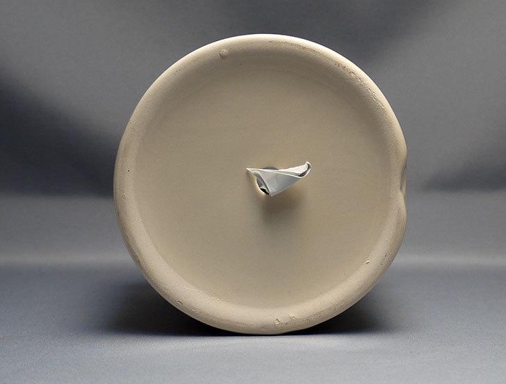 アート植木鉢-花盆-洋陶器植木鉢43(クリーム色)を2個買って来た6.jpg