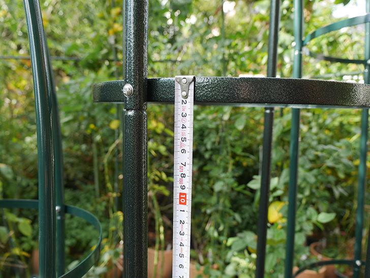 オベリスク-トール-鉄製-アイアン-直径40cm-高さ215cm-パイプ径19mm-簡易組立式-(1個)-を買った15.jpg
