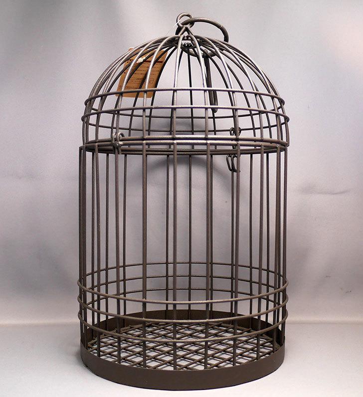 カインズでワイヤー花台-鳥かご-中を買って来た。2018年-1.jpg