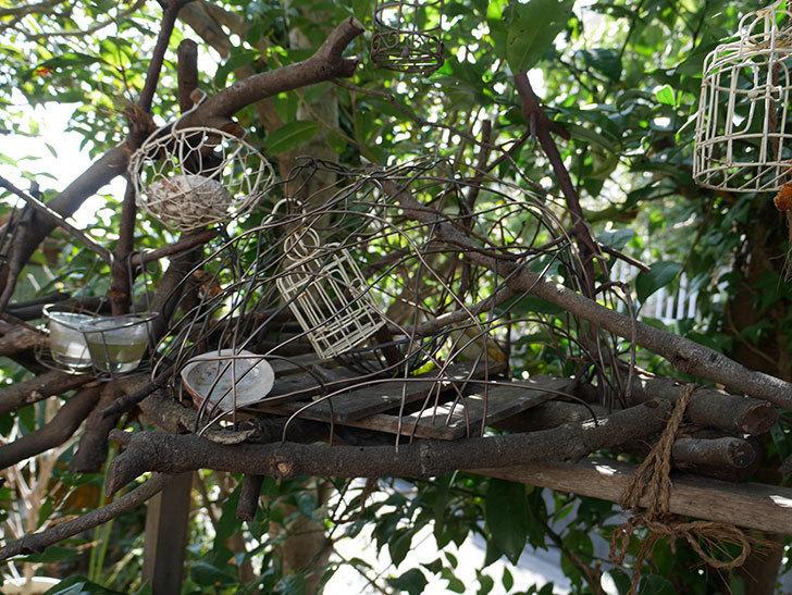 カインズでワイヤー花台-鳥かご-中を買って来た。2018年-11.jpg