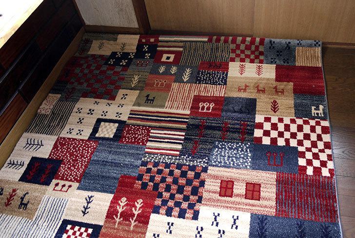 カシュガイ-KASHQAI-55136-032をホームズで買ってきた8.jpg