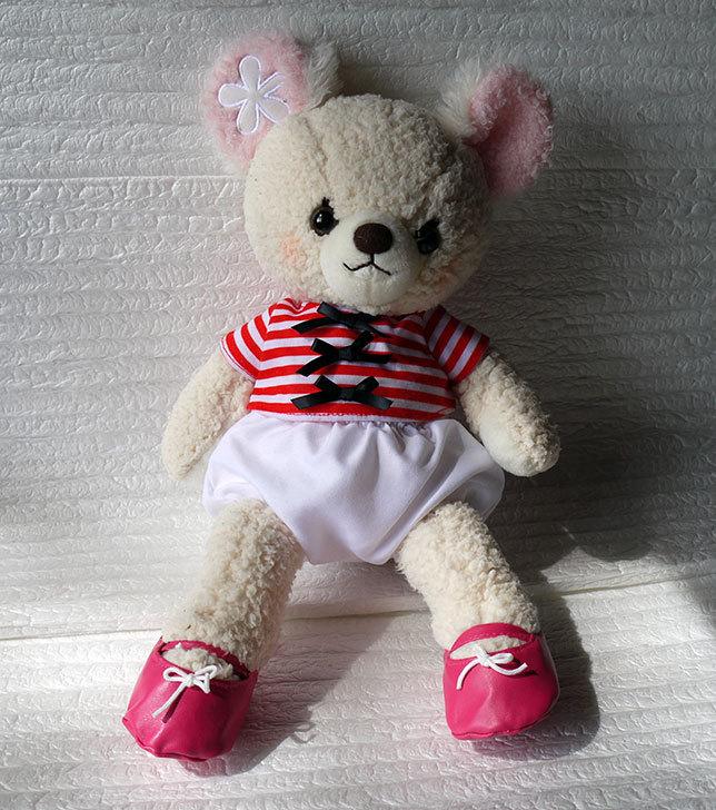 ガーリーベア-お着替えバラ-トップス03とお着替えバラ-靴01を買ってあげた1.jpg