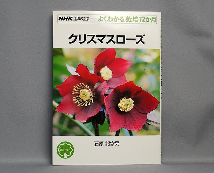 クリスマスローズ-(NHK趣味の園芸―よくわかる栽培12か月)を買った1.jpg