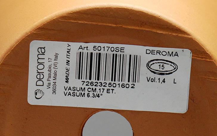 グリーンポット-バッサム-17cmDE-50170を買った6.jpg