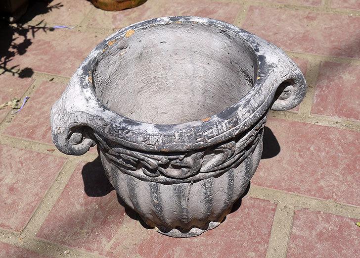 グレーのデザイン鉢がホームズで200円だったので買って来た2.jpg