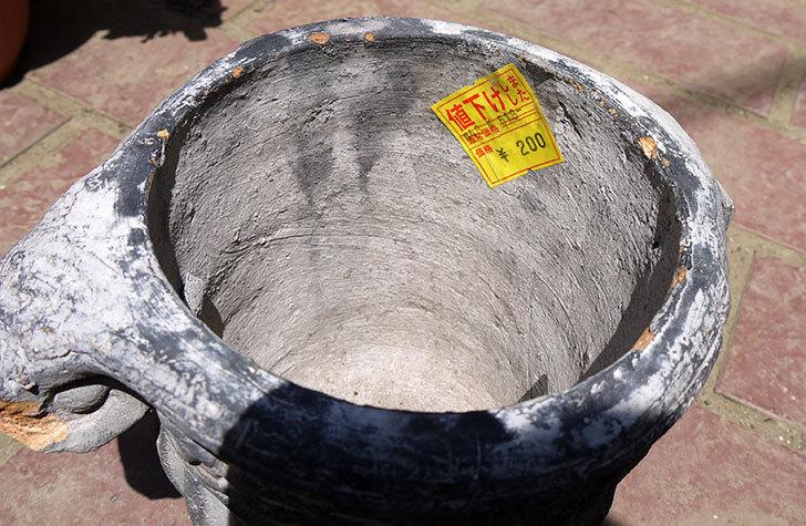グレーのデザイン鉢がホームズで200円だったので買って来た3.jpg