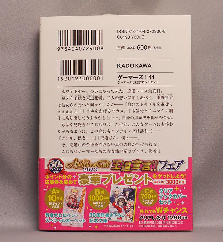 ゲーマーズ!11-ゲーマーズと初恋マルチエンドを買った2.jpg