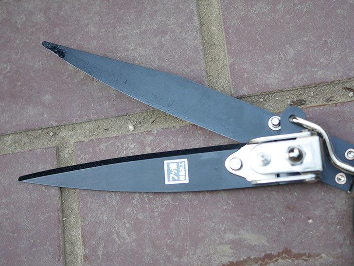 ゴールデンスター これが日本の芝生鋏 2105を買った-011.jpg