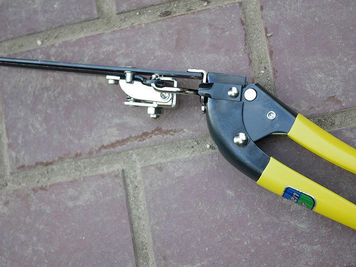 ゴールデンスター これが日本の芝生鋏 2105を買った-015.jpg