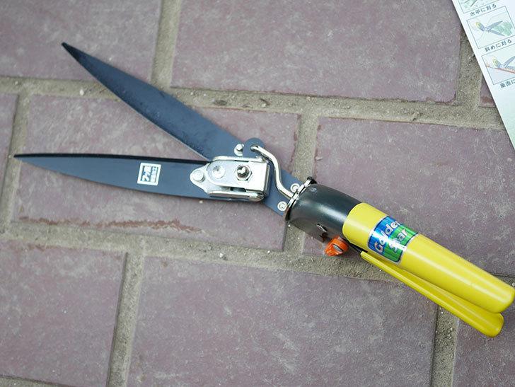 ゴールデンスター これが日本の芝生鋏 2105を買った-016.jpg