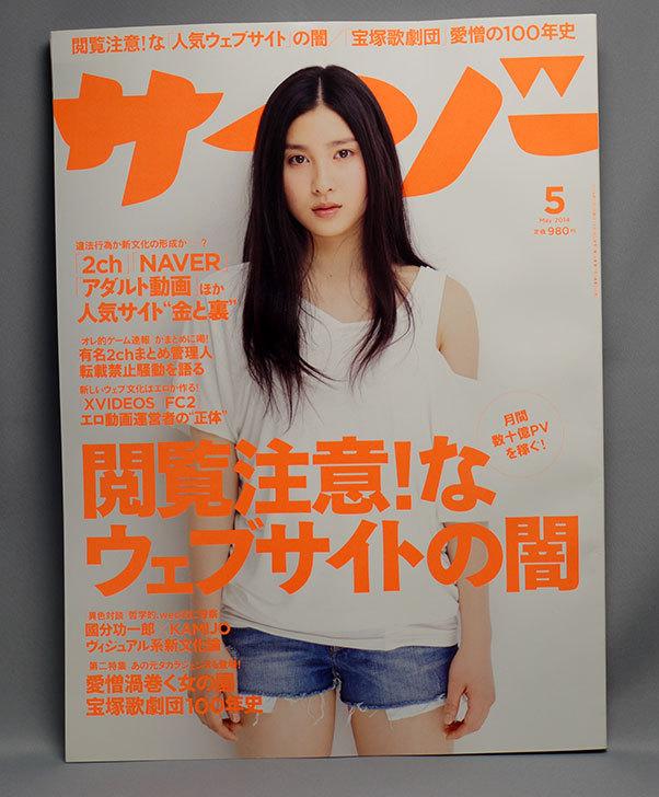 サイゾー-2014年-05月号を買った.jpg