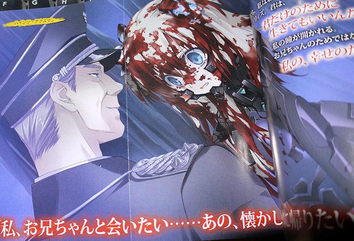 シュヴァルツェスマーケン-紅血の紋章3-2.jpg