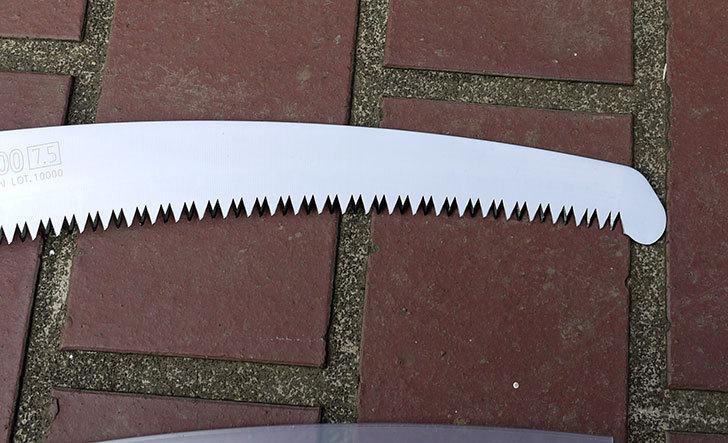 シルキー-剪定用鋸-ズバット-300mm-本体-270-30を買った10.jpg